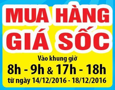gio-vang-gia-sock